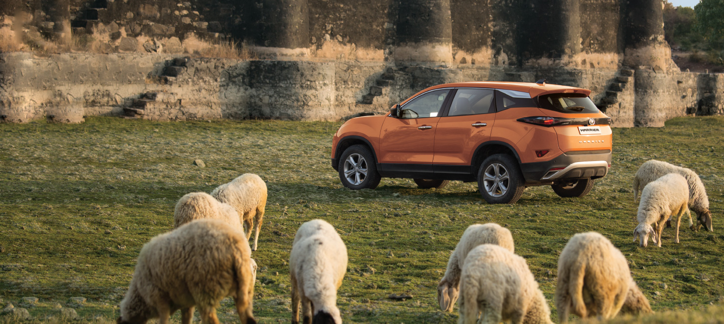 Tata HARRIER - Reviews